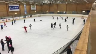 IEST JS January: Ice Skating